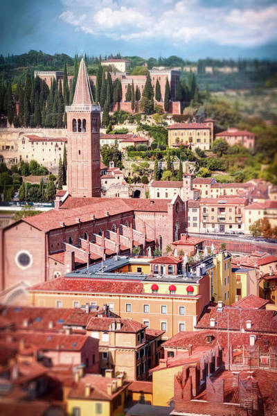 Wall Art - Photograph - Red Rooftops Of Verona Italy by Carol Japp
