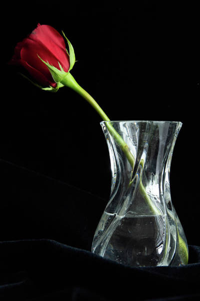 Photograph - Red Rose And Vase by Jennifer Wick