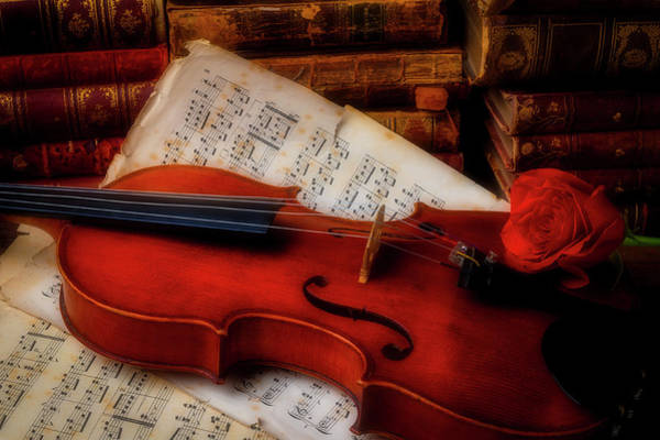 Wall Art - Photograph - Red Rose And Violin With Sheet Music by Garry Gay