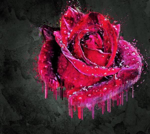 Wet Rose Wall Art - Painting - Red Rose Drop by ArtMarketJapan