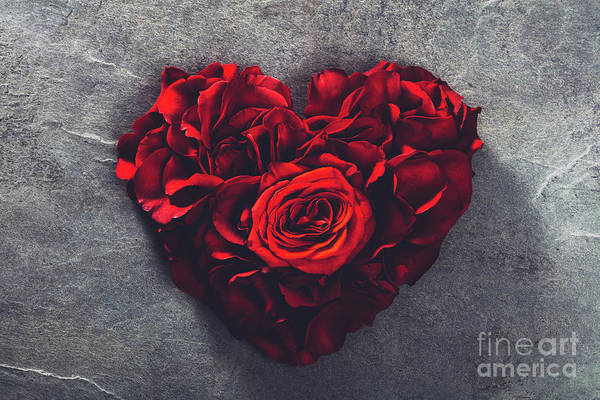 Wall Art - Photograph - Red Roses In Heart Shape by Michal Bednarek