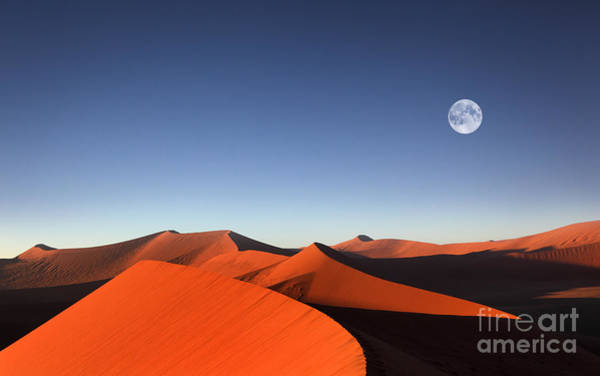 Wall Art - Photograph - Red Sand Dune With Full Moon by Dietmar Temps
