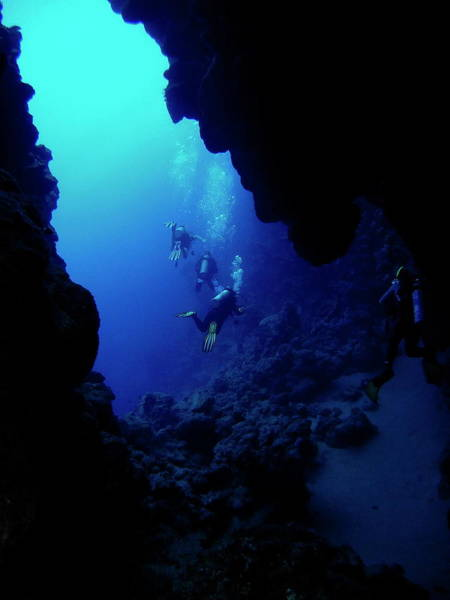Underwater Photograph - Red Sea Underwater Caves by Adri B Freitas Brandao