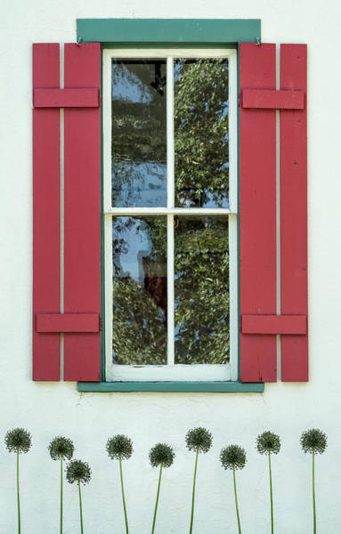 Photograph - Red Shutters by Denise Bush