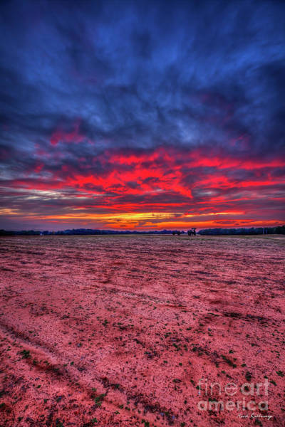 Wall Art - Photograph - Red Sunset 3 Cotton Field Agriculture Farming Landscape Art by Reid Callaway