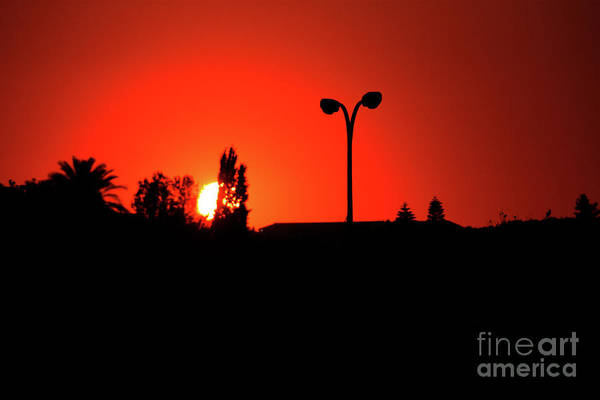 Photograph - Red Sunset by Doc Braham