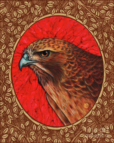 Painting -  Red Tailed Hawk Portrait - Brown Border by Amy E Fraser