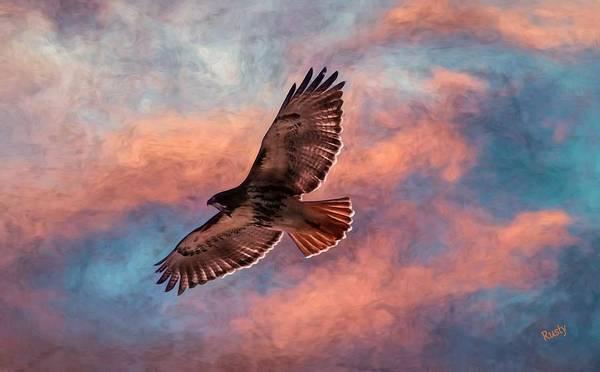 Digital Art - Red-tailed Hawk Soaring High. by Rusty R Smith