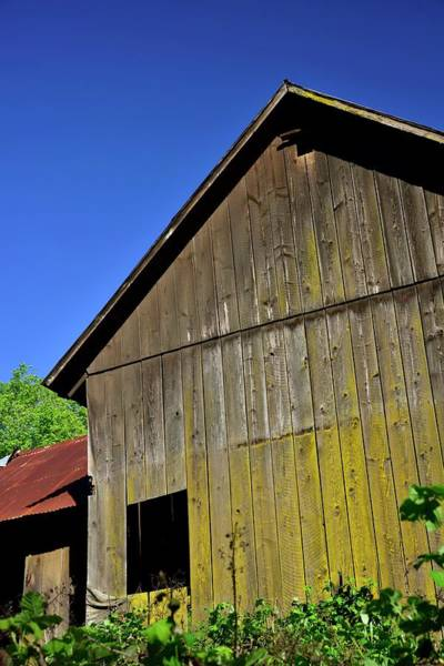 Photograph - Red Tin Roof And Weathered Wood by Jerry Sodorff