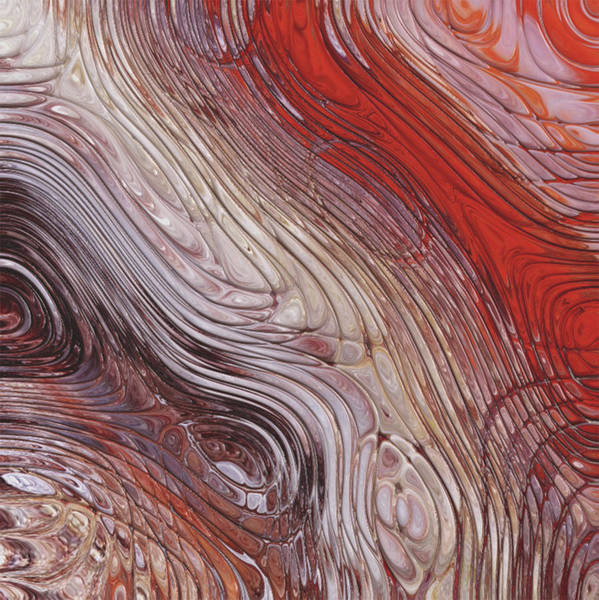 Wall Art - Painting - Red Tones by Jack Zulli