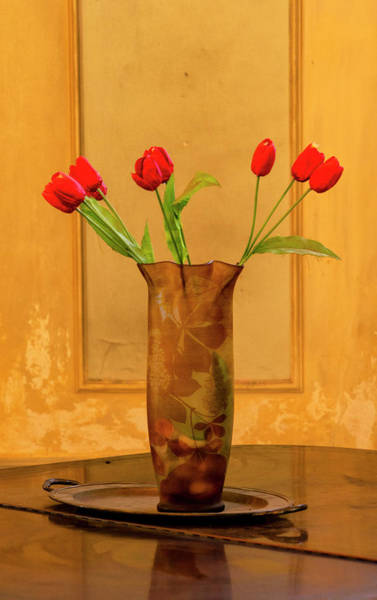 Photograph - Red Tulips by Tom Singleton