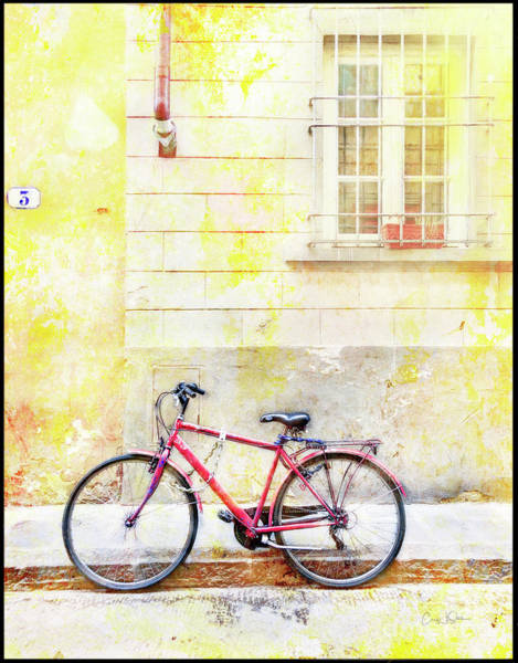 Photograph - Red Valentine Bicycle by Craig J Satterlee