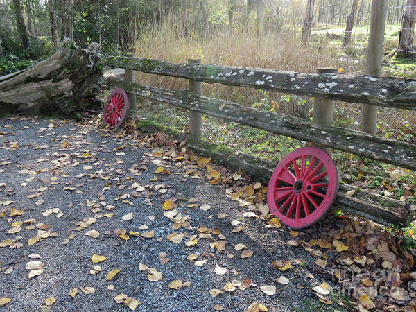 Wall Art - Photograph - Red Wheels by Mary Mikawoz