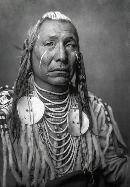 Wall Art - Photograph - Red Wing - Crow Apsaroke Tribe C. 1908 by Daniel Hagerman