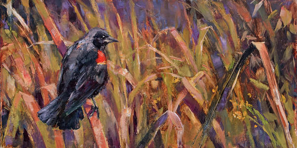 Red-winged Blackbird Wall Art - Painting - Red-winged Blackbird by Tracie Thompson