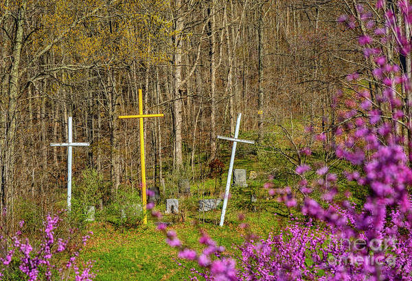 Photograph - Redbud And Crosses  by Thomas R Fletcher