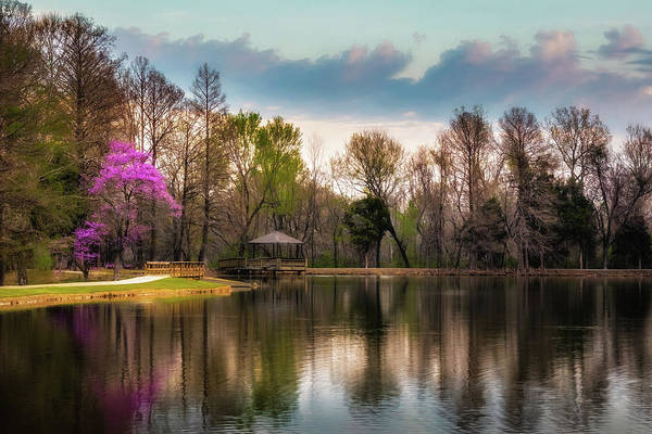 Honor Heights Park Photograph - Redbud And Lake by James Barber