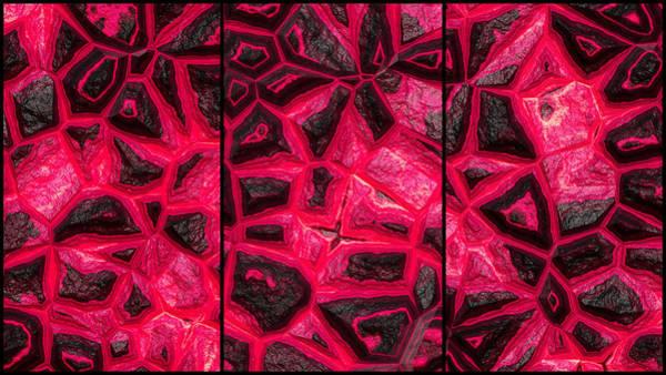 Digital Art - Reddish Flower Stone Wall Triptych by Don Northup