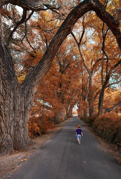 Photograph - Redhead Fall Walkabout by Tom Gresham