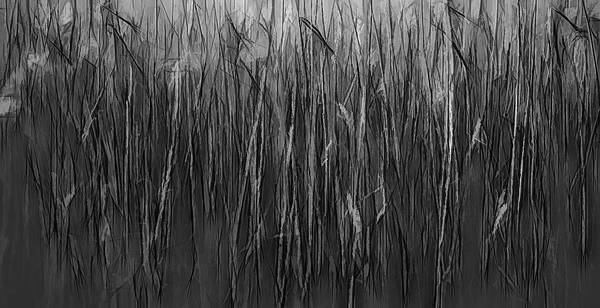 Digital Art - Reeds Abstract Bw #i1 by Leif Sohlman