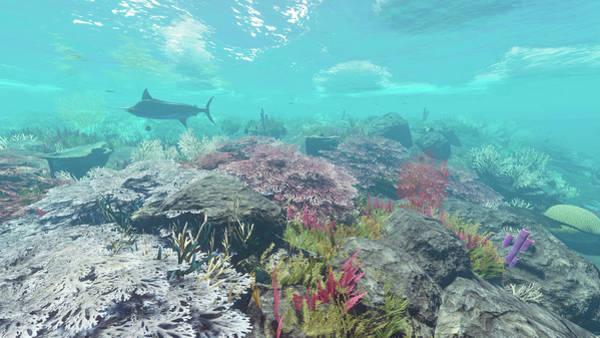 Digital Art - Reef Scene 6 by Duane McCullough