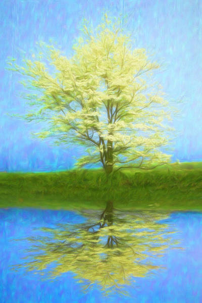 Photograph - Reflecting On Spring Bright Painting by Debra and Dave Vanderlaan