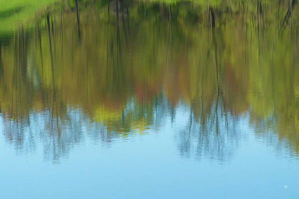 Photograph - Reflection At Saugerties Village Beach by Tom Romeo