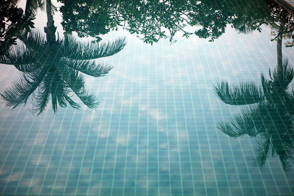 Tile Floor Wall Art - Photograph - Reflection Of Palm Trees In A Swimming by Frank Rothe