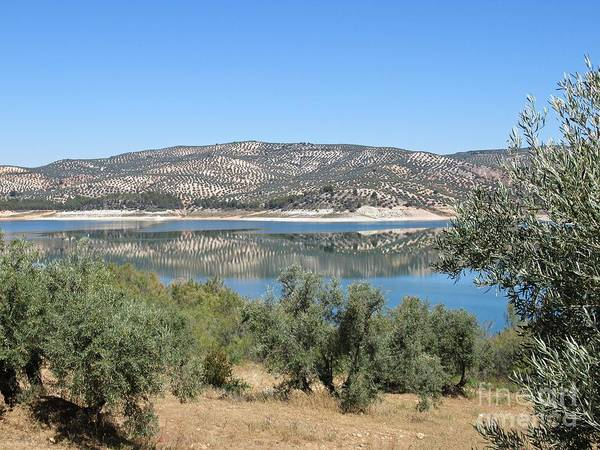 Photograph - Reflection On The Lake Near Iznajar by Chani Demuijlder
