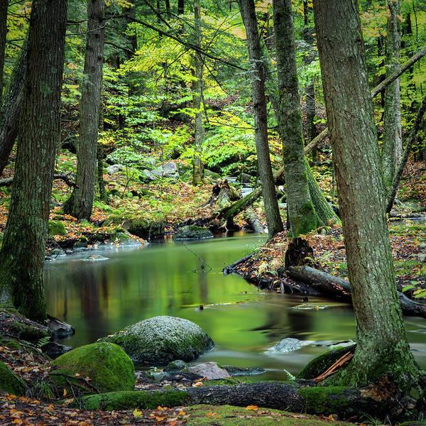 Photograph - Reflection Pond by David Heilman