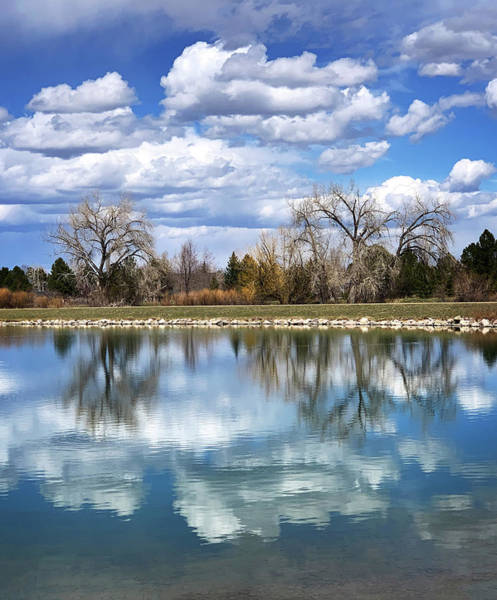 Photograph - Reflections At Harper's Lake by Marilyn Hunt
