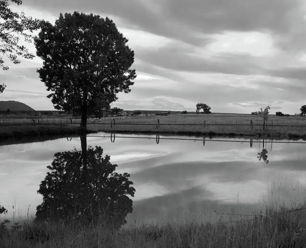 Wall Art - Photograph - Reflections At Pond 1- Black And White by Dana Klein