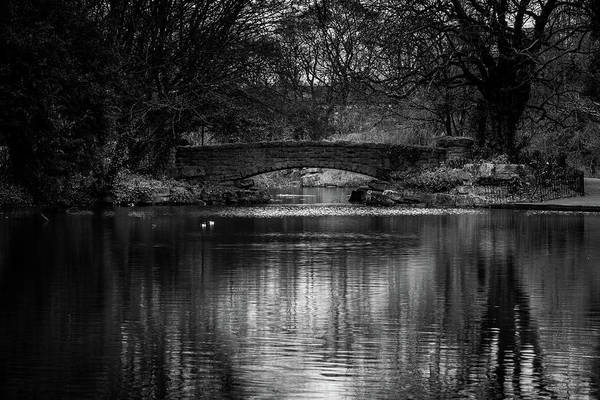 Photograph - Reflections In A Dublin Park by Georgia Fowler
