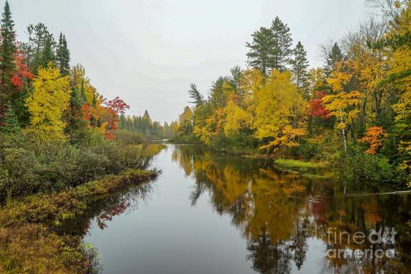Photograph - Reflections In Autumn by Susan Rydberg