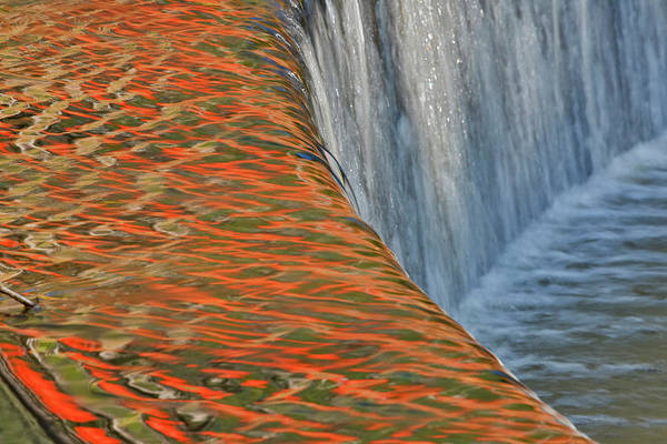 Callaway Gardens Wall Art - Photograph - Reflections In Pond Springtime Colors by Darrell Gulin