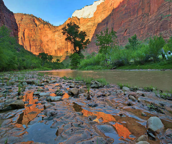 Photograph - Reflections In Virgin River by