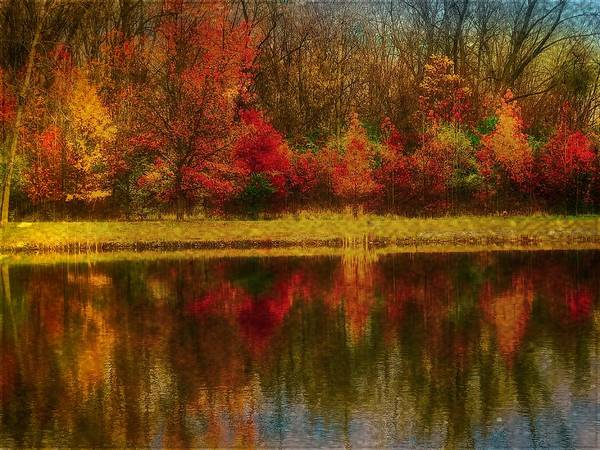 Photograph - Reflections by Jack Wilson