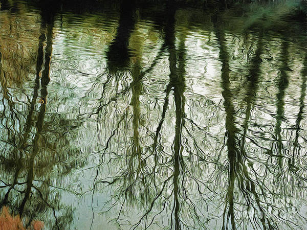 Photograph - Reflections by Leigh Kemp