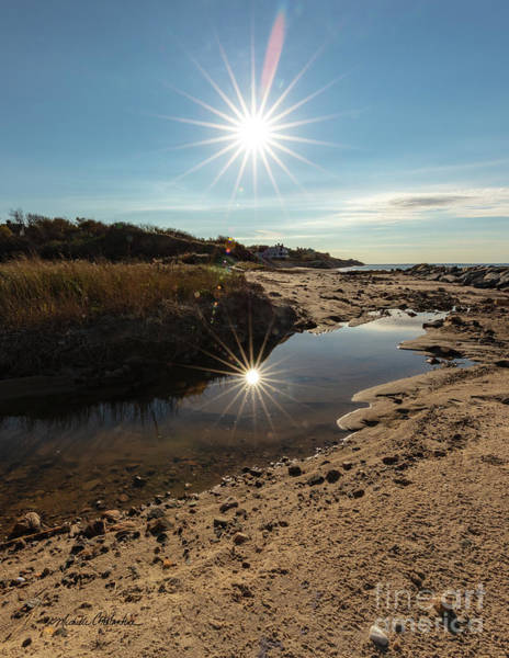 Photograph - Reflections Of Autumn At The Beach by Michelle Constantine