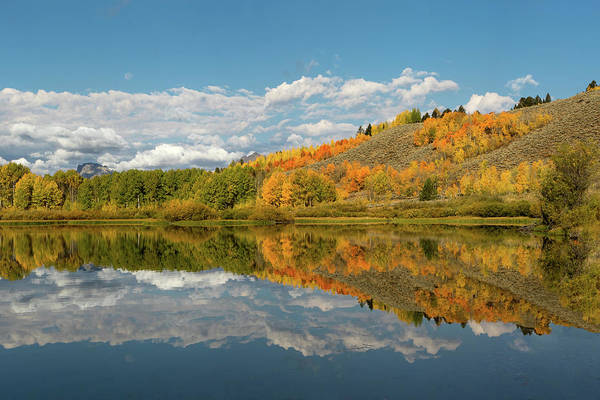 Photograph - Reflections Of Fall by Ronnie and Frances Howard
