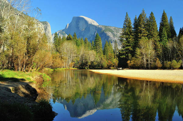 Sunlight Photograph - Reflections Of Half Dome by Sandy L. Kirkner