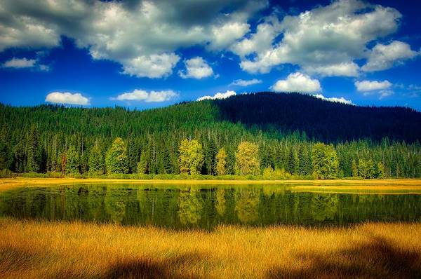 Wall Art - Photograph - Reflections Of Lost Lake - Willamette National Forest, Oregon by U S F S
