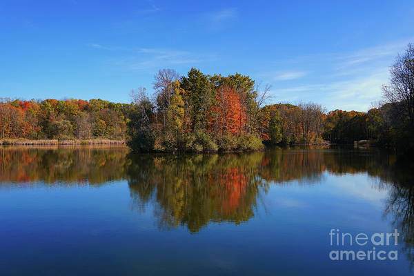 Photograph - Reflections Of Maybury Autumn by Rachel Cohen