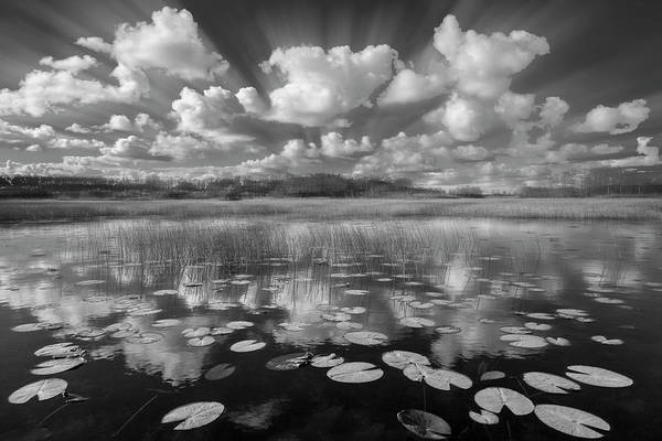 Photograph - Reflections Over The Marsh In Black And White Dreamscape by Debra and Dave Vanderlaan