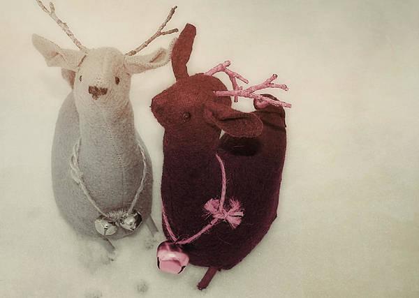 Photograph - Reindeer Dash by JAMART Photography