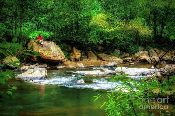 Photograph - Relaxing Along Little River by Nick Zelinsky