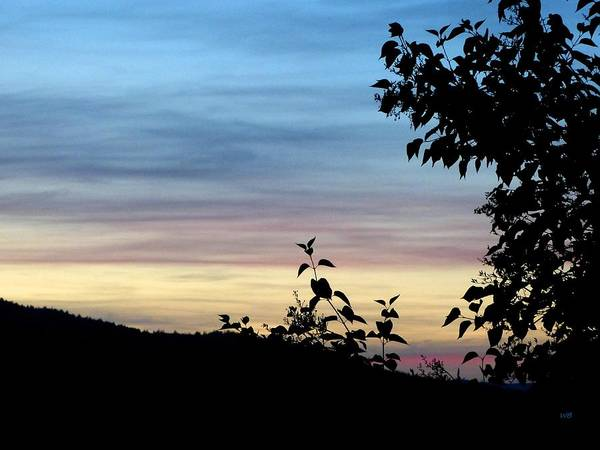 Photograph - Restful Days End by Will Borden