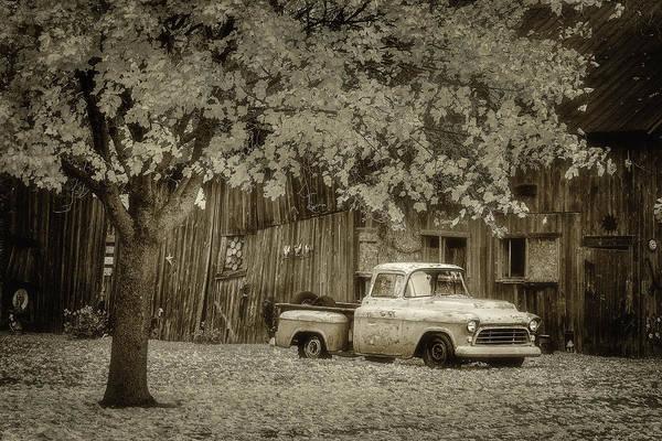Photograph - Resting by David Heilman