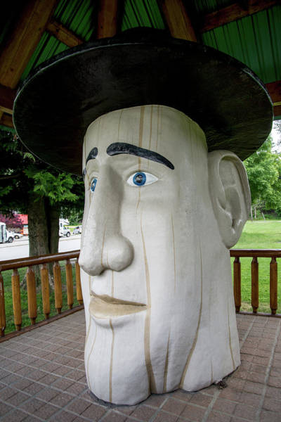 Wall Art - Photograph - Revelstoke Bc Woodenhead by Carol Ailles