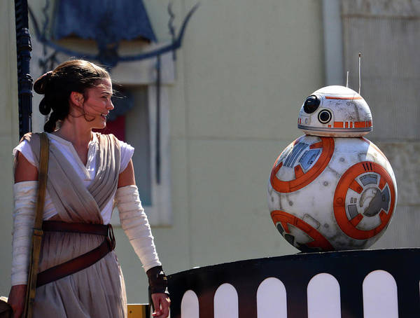 Wall Art - Photograph - Rey And Bb 8 by David Lee Thompson